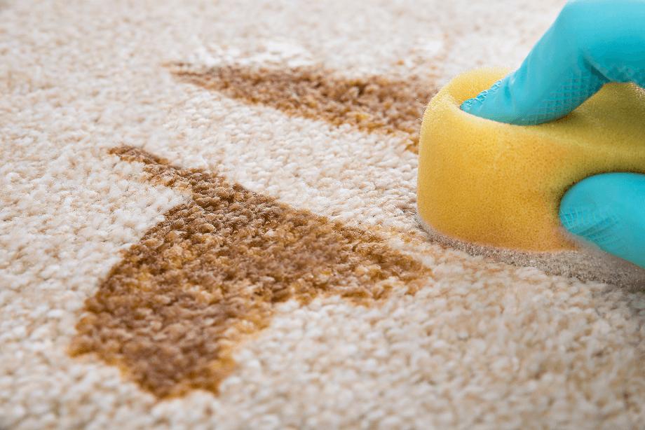 Cómo quitar las manchas de la alfombra